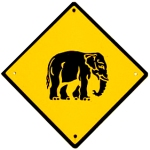 elephant crossing PD