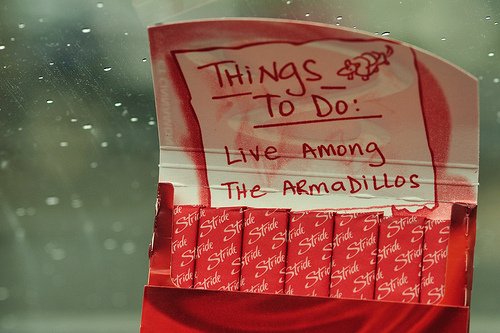 Things To Do by hjhipster CC BY-NC 2.0 Flickr