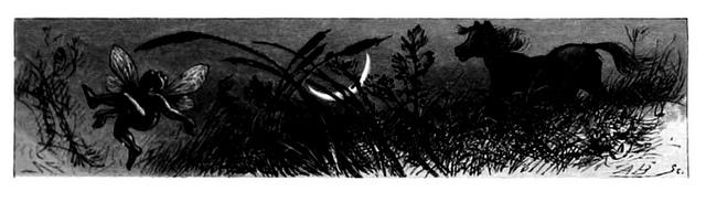 A Midsummer-Night's Dream public domain